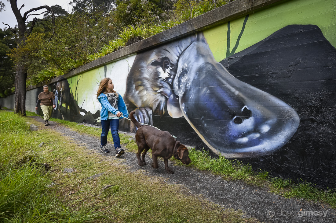 Platypus street art (by Jimmy Beattie) for conservation - Warburton